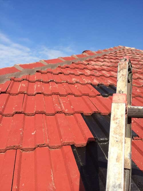 Roof1.1